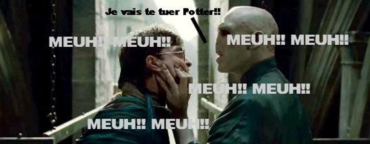 Harry Potter et la boite à Meuh