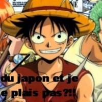 Pourquoi je n'aime pas One Piece